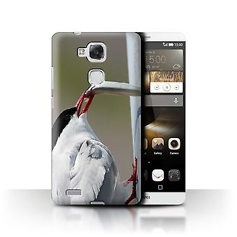 STUFF4 Case/Cover for Huawei Ascend Mate7/Arctic Bird/Tern/Arctic Animals