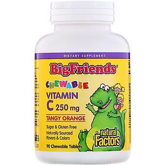 Natural Factors, Big Friends, Chewable Vitamin C, Tangy Orange, 250 mg, 90 Chewa