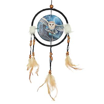 Decorative Heart of the Storm Owl Design Dreamcatcher Small X 1 Pack