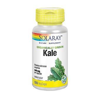 Solaray Orgaanisesti kasvatettu lehtikaali, 100 korkkia
