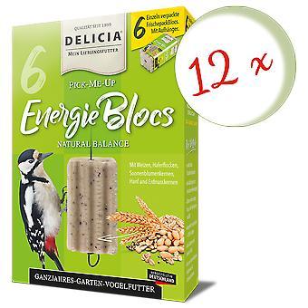 Sparset: 12 x FRUNOL DELICIA® Delicia® Pick-Me-Up Energieblocs, 6 Stück
