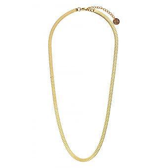 Clyda Kvinnors Smycken Halsband BCLCO0017SD - Dor Steel