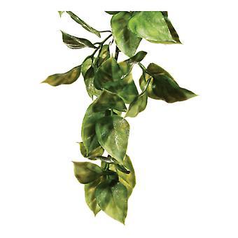エキソ テラ エキソ テラ プラスチック植物 AMAPALLO - 小