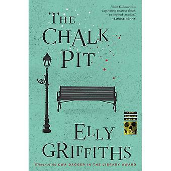 Chalk Pit 9 av Elly Griffiths