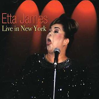 Etta James - bor i New York [CD] USA import