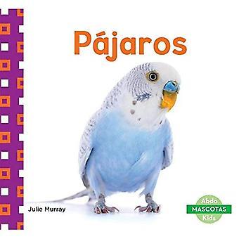Pajaros (Birds) (Mascotas (Family Pets))