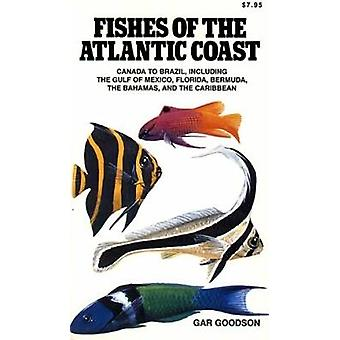 Kalat Atlantic Coast - Kanada Brasilia - kuten Gulf-o