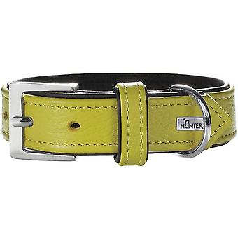 Hunter Collar Capri Lime Green and Black (Dogs , Collars, Leads and Harnesses , Collars)