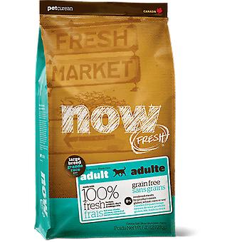 Now Grain Free Adult Large Breed (Perros , Comida , Pienso)