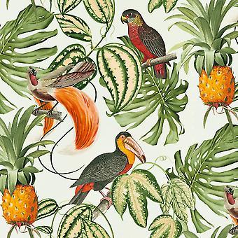 Paradisio Tropiska fåglar Bakgrund Vit Erismann 6302-07