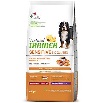Trainer Maturity Medium Maxi (Dogs , Dog Food , Dry Food)