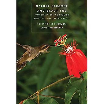 Natur Konstigt och vackert: Hur levande varelser utvecklats och gjort jorden ett hem