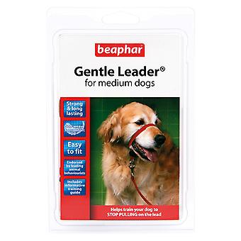 Beaphar Gentle Leader For Medium Dogs, M, Red Lead