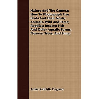Nature And The Camera How To Photograph Live Birds And Their Nests Animals Wild And Tame Reptiles Insects Fish And Other Aquatic Forms Flowers Trees And Fungi by Dugmore & Arthur Radclyffe