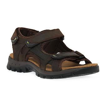 Grunland head of blackberry l7melt shoes