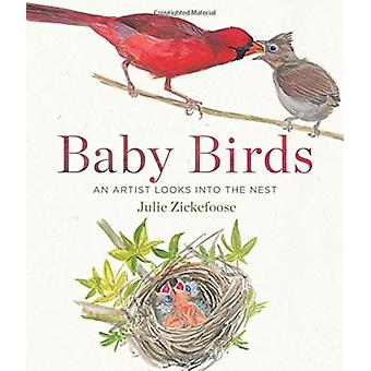 Baby Birds  An Artist Looks Into the Nest by Julie Zickefoose