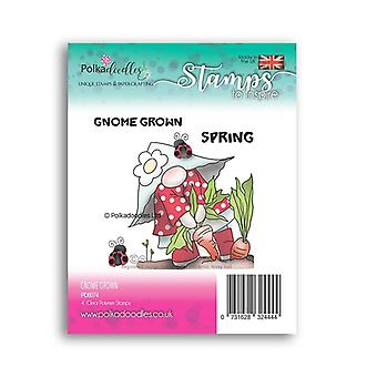 Polkadoodles Gnome Grown Clear Stamps