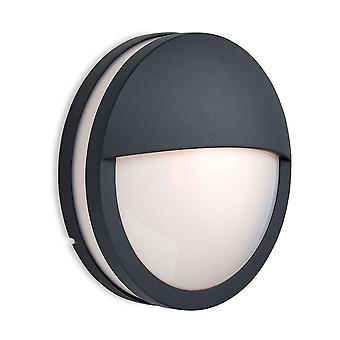 Firstlight Zenith - 1 Lichtwand/Flush Plafondhanger Licht Grafiet, Opal Diffuser IP54, E27