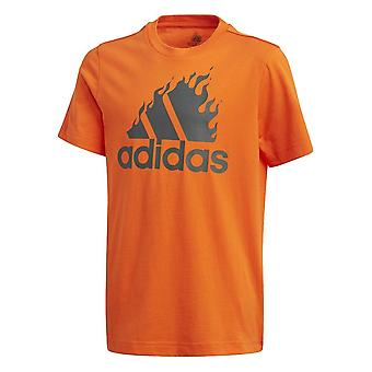 Adidas JB Bos Grafika GD9259 univerzálny po celý rok muži t-shirt