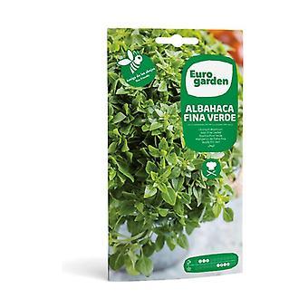Green Fine Basil Seeds 3 g