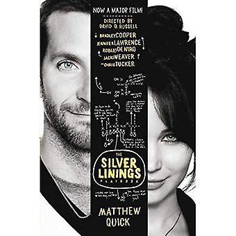 Die Silver Linings Playbook