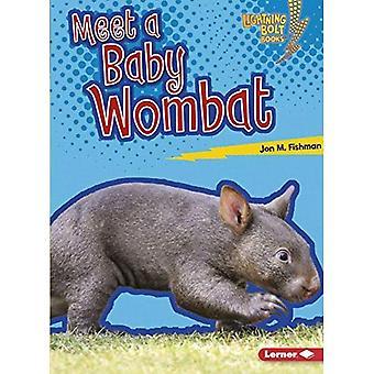 Träffa en bebis Wombat (Lightning Bolt böcker Baby australiska djur)