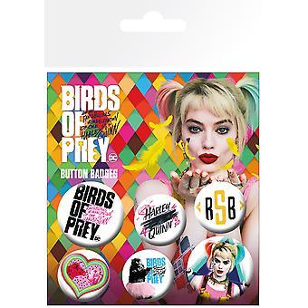 Ragadozó madarak mix BADGE Pack