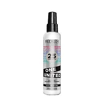 Care Anti-Frizz One United Redken (150 ml)