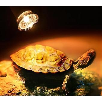Turtle Heating Lamp, Mini Pet Heat Bulb, Lizards Temperature Controller Uv