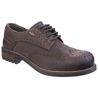 Cotswold heren Oxford schoen