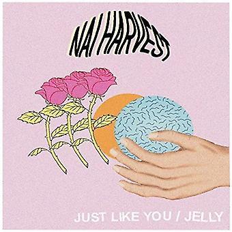 Nai Harvest - Just Like You [Vinyl] USA import
