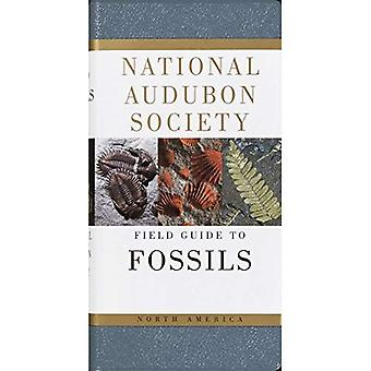 National Audubon Society Field Guide to Fossils (National Audubon Society Field Guides)