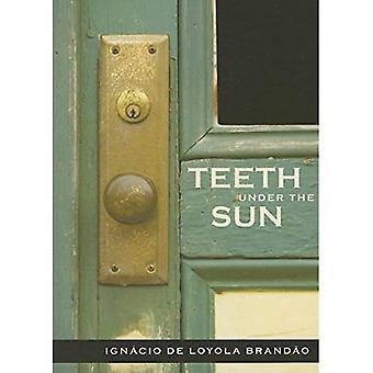 Tänder under solen
