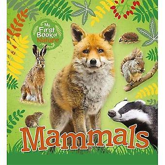 Min första bok av naturen: däggdjur (min första bok av naturen)