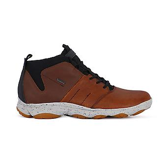 Geox Nebula U742VA046EKC606N universal all year men shoes