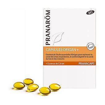 Oregano + BIO capsules 30 capsules