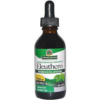 Nature's Answer, Eleuthero, Alcohol-Free, 2000 mg, 2 fl oz (60 ml)