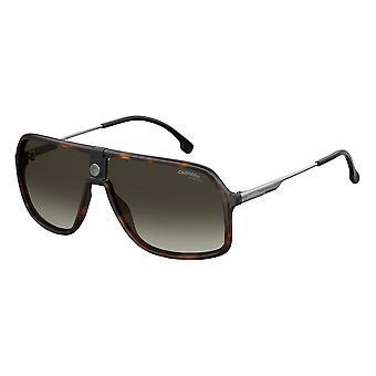 Carrera 1019/S 086/HA Dark Havana/Brown Gradient Sunglasses