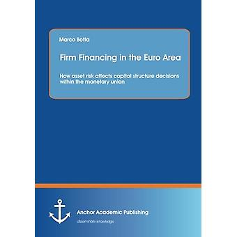 Firm Financing in the Euro Area - How Asset Risk Affects Capital Struc