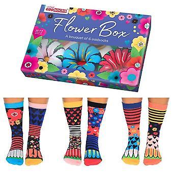 Spojené oddsocks kvetinové box ponožky