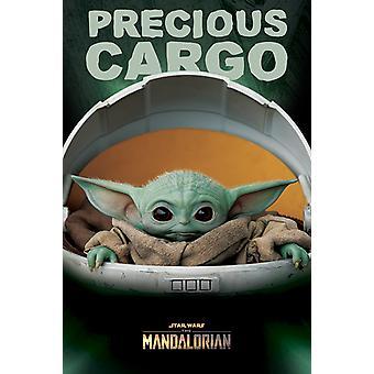 Star Wars: The Mandalorian - Precious Cargo 61 x 91.5cm Maxi Poster