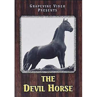 Importer des diable USA cheval 1926 [DVD]