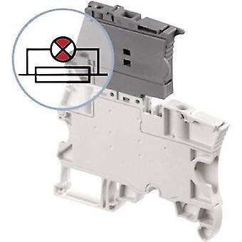 ABB 1SNK 506 412 R0000 Sicherung Klemme 6 mm Schrauben Konfiguration: L Grau 1 PC