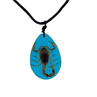 The Olivia Collection Large Bug Necklace - REAL scorpion Set In Blue Resin Case