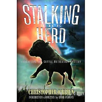 Stalking flokken: Undersøke storfe lemlestelse mysteriet