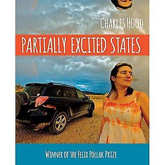 États partiellement excités (série de poésie Wisconsin)