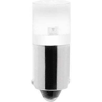 Barthelme Wskaźnik LED BA9S Światło dzienne biały 230 V DC, 230 V AC 7011 3915
