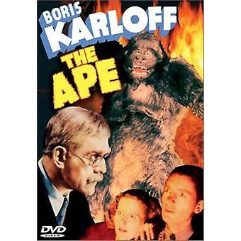 Affe (1940) [DVD] USA import