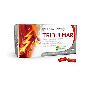 Tribulate 60 vegetable capsules