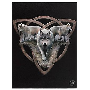 Anne Stokes 19x25cm Wolf Trio Canvas